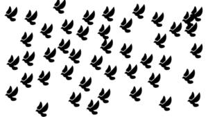 日本野鳥の会 数え方 フェルミ推定